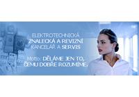 Elektrorevízie